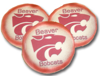 Beaver Logo [IMG-M]